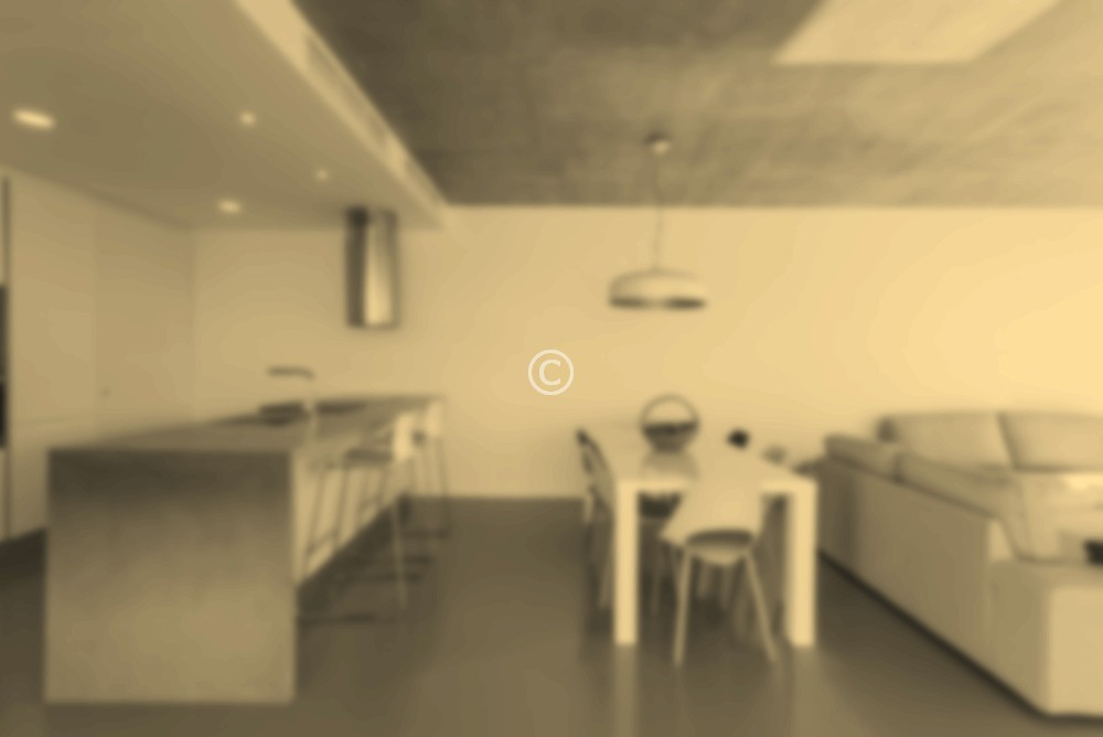 View of modern kitchen with dinner table and sofa